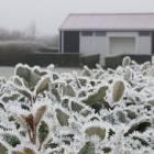 NIEUW: Wintercamping