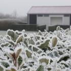 NIEUW: Winterkamperen