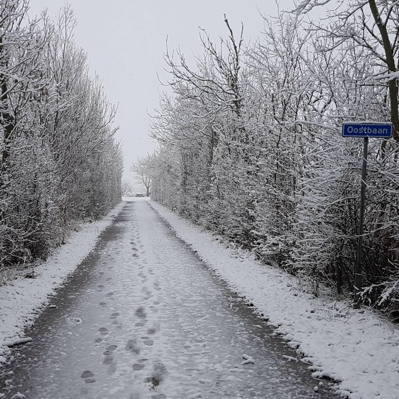 winterkamperen Zoutelande